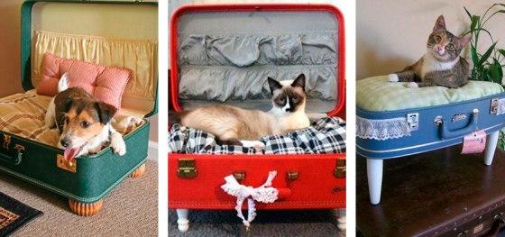 Camas originales para mascotas con maletas