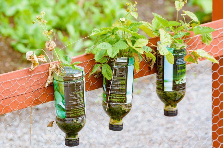 5 ideas de reciclaje creativo  Ingredientes que Suman