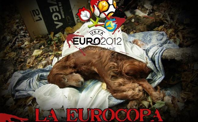 Ucrania euro perros