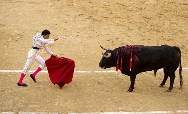 britanicos-financian-corridas-de-toros