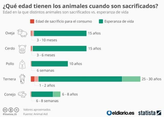 Grafico edad animales sacrificio