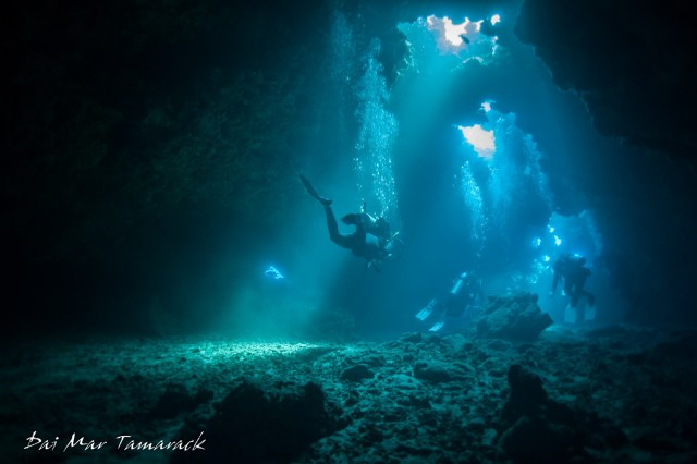Dive in the United States