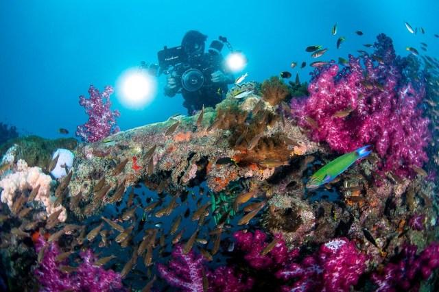 Yongala - wreck - Australia - Queensland