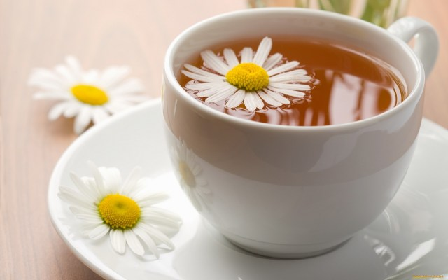Tea is an aromatic beverage commonly prepared by pouring hot or boiling water over cured leaves of the Camellia sinensis, an evergreen shrub native to Asia. After water, it is the most widely consumed drink in the world