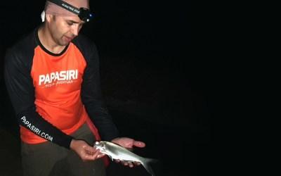 Pesca Noturna nas Praias Agrestes de Balneário Camboriú
