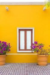 Casas Color Amarillo