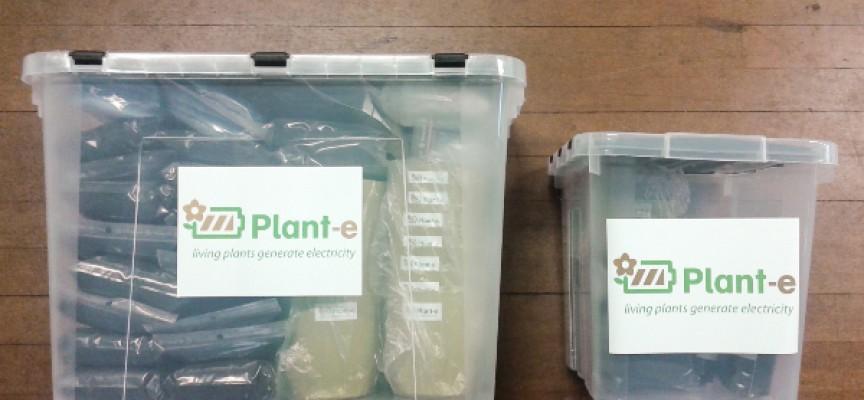 Des kits pour produire de l'électricité à partir des plantes.