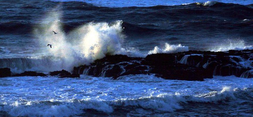 La haute mer n'appartient à aucun pays. Quel droit pour la protéger ?