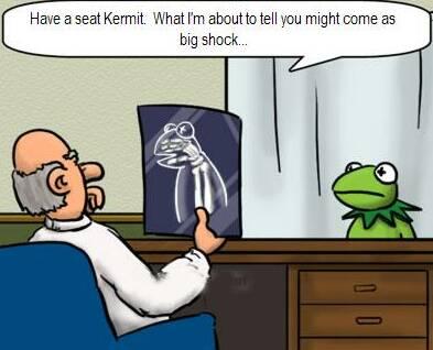 Kermit's X Ray