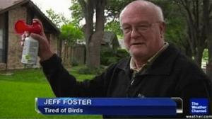 Tired of birds
