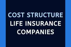 Life insurance companies cost structure details