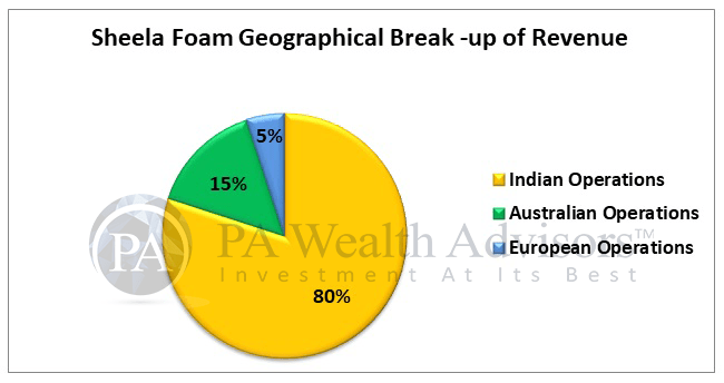 sheela foam stock analysis with detail of geographical revenue segments