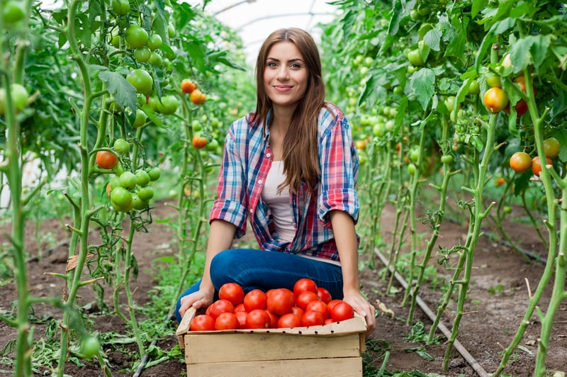 Form 943 What You Should Know For Farmworker Withholding Pdffiller