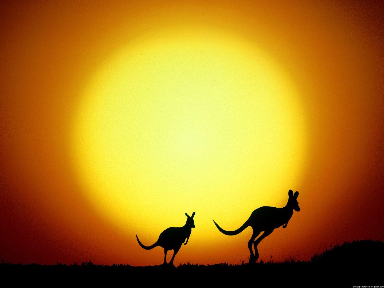 Australia on mind
