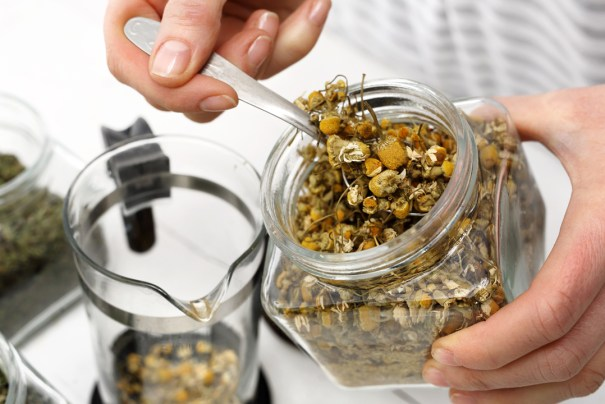 Making chamomile tea in a french press