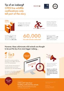 wap-tipofaniceberg-infographic-a4-2-0-03