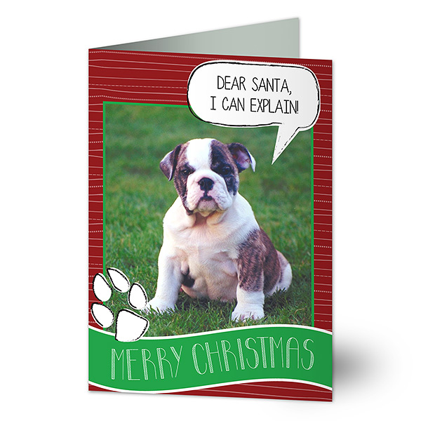 Dog Christmas Photo Card