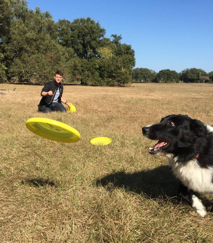Play Fetch Before You Train Without the Pain