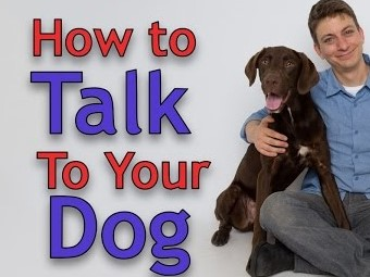 How to talk to your dog with Zak George