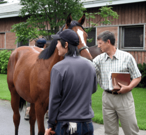 performance horse nutrition