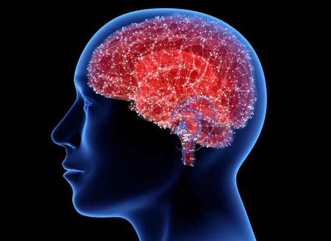 3D illustration of man with his brain highlighted
