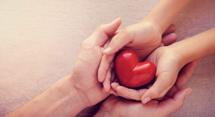 adult and child hands holding red heart, organ donation concept image.