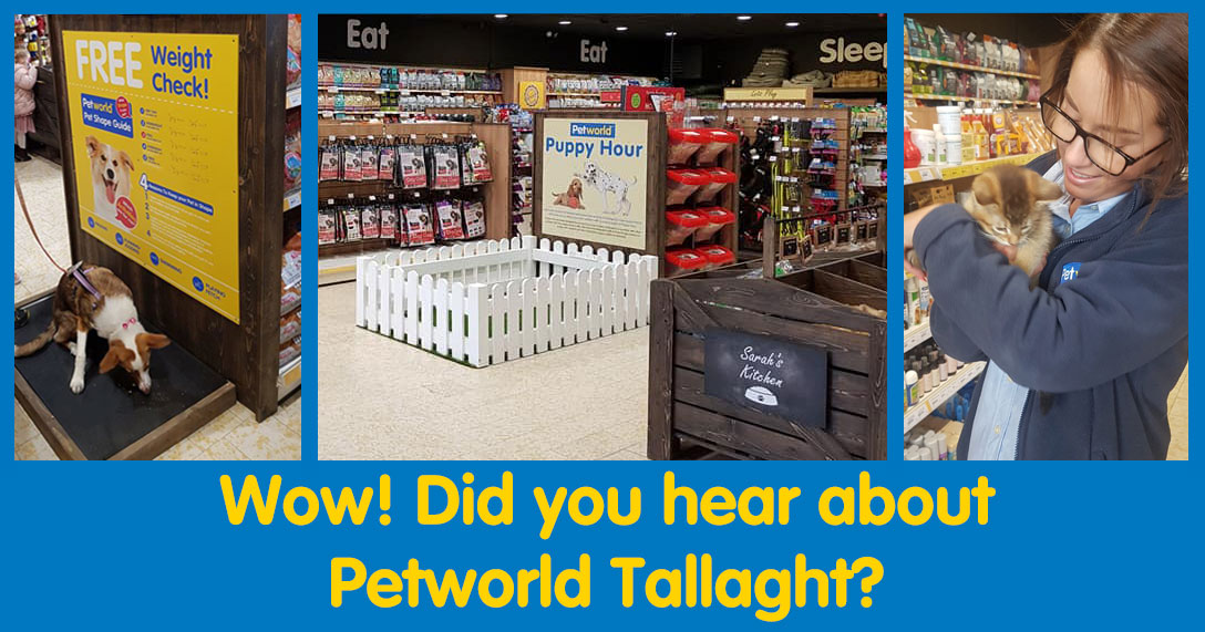 pet_store_tallaght