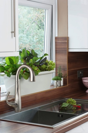 kitchen window box remodeling companies solutions herb boxes pfister faucets