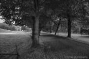 IMG_5579_HDR