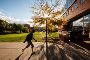 Tree, Sun, Student, WVU