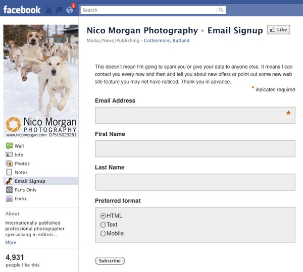 nicomorgan-mailchimp.jpg
