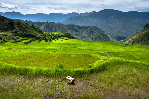 Cordilleras_2089_5658