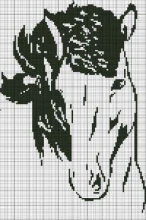 cavallo monocolore  BertaFilava