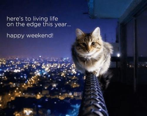 weekend8