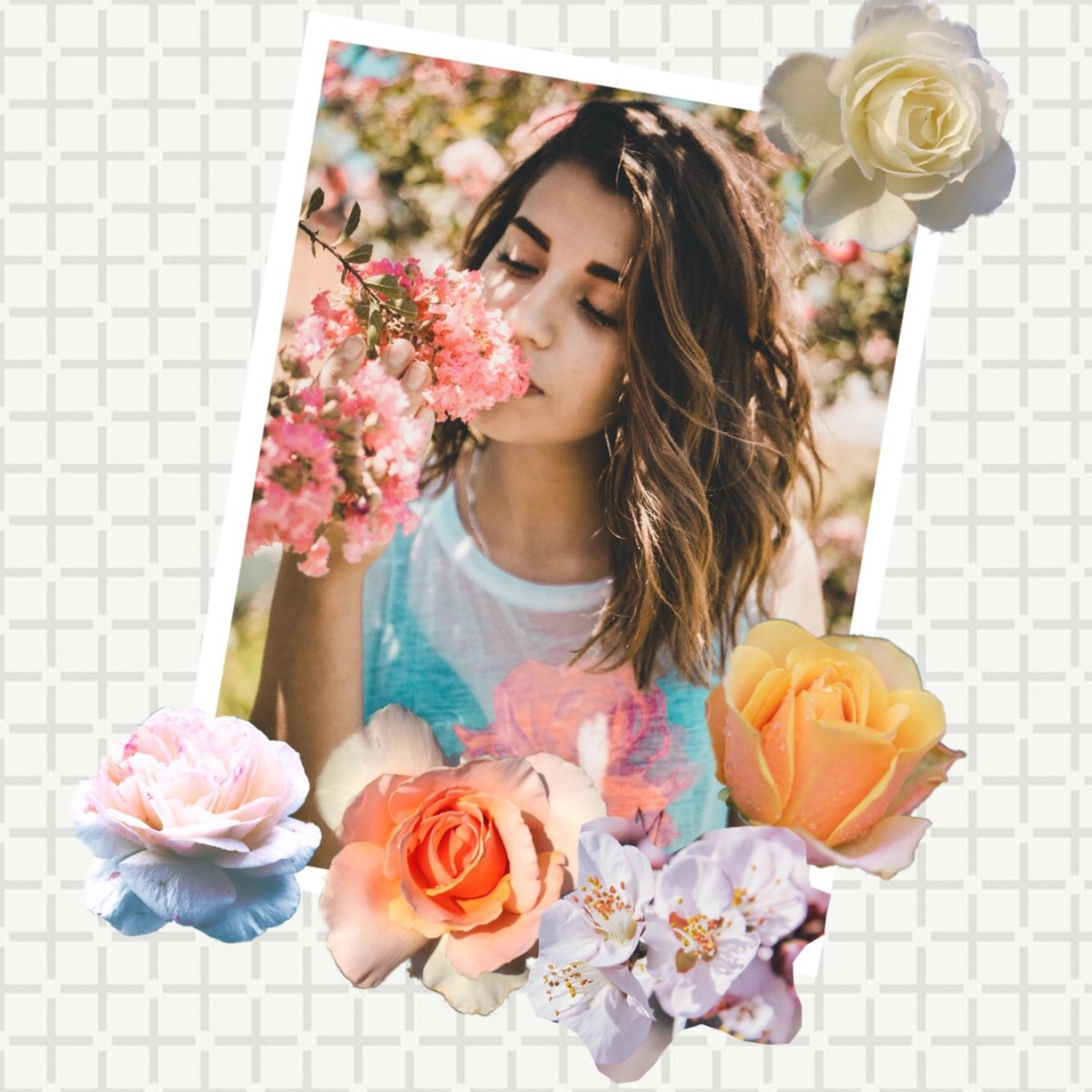 How To Use Photos With Flower Imagery In Collages Piccollage