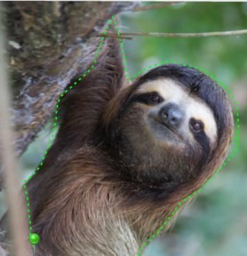 slothcut
