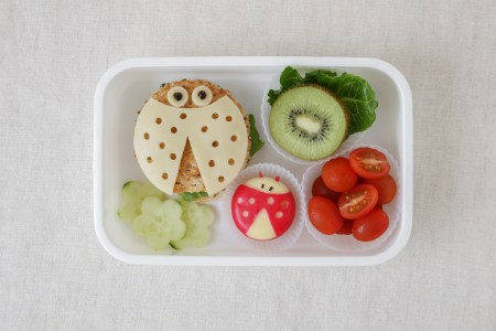 Ladybug ladybird healthy lunch box, fun food art for kids