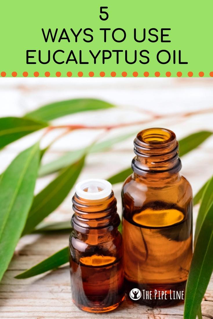 5 Ways To Use Eucalyptus Oil This Fall