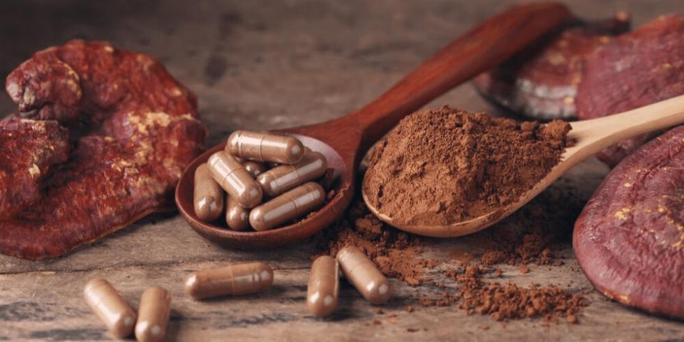 Mushroom Supplement Extract