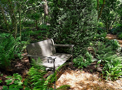 Solitude in JLBG's Woodland Garden July 2014