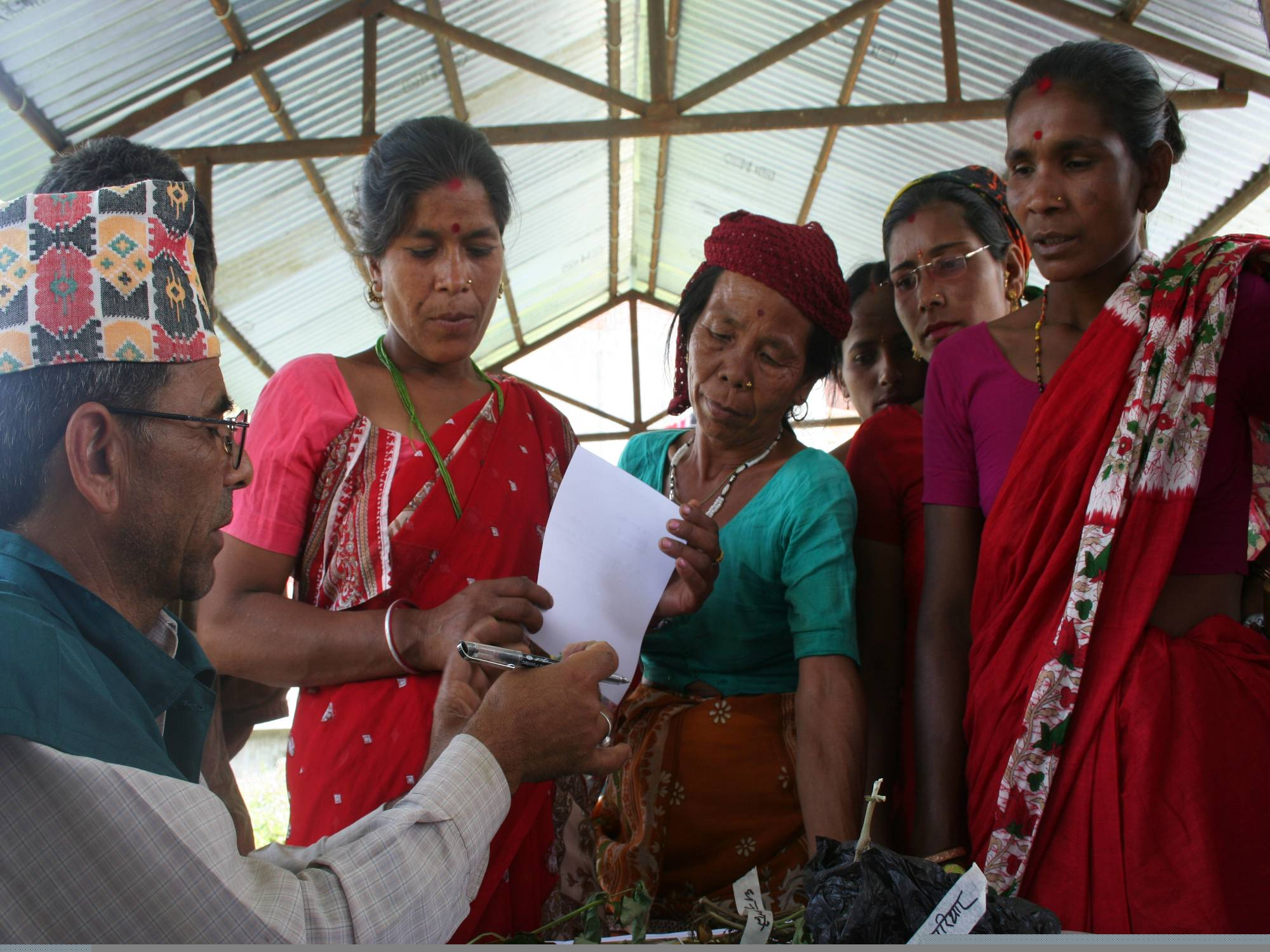 Developing 'last mile' extension services with Plantwise in Nepal