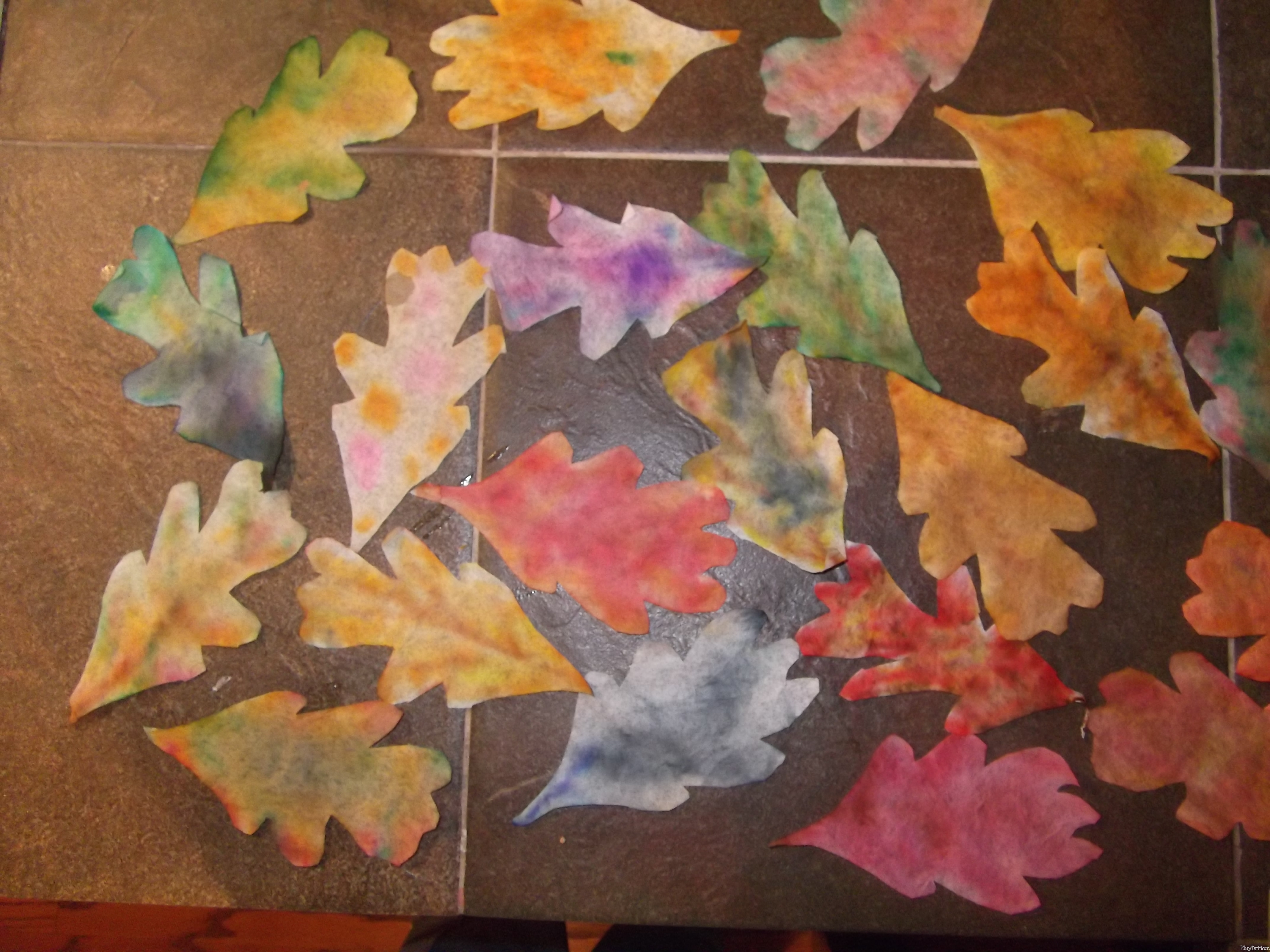 The Leaves Of Change Coffee Filter Fall Leaves