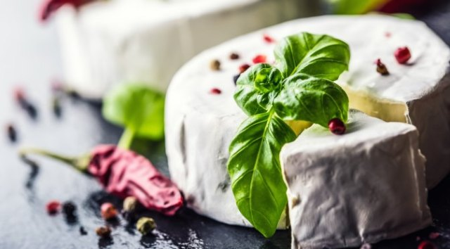 European Delicacies: Camembert Cheese France