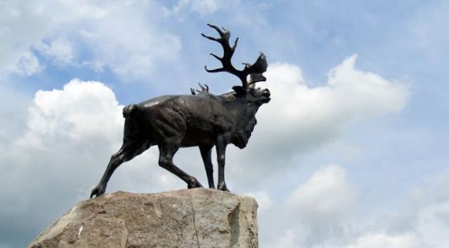 Battlefields to Visit in The Somme: Newfoundland Memorial Park Caribou