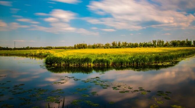 National Parks of The Netherlands