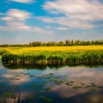 National Park The Netherlands