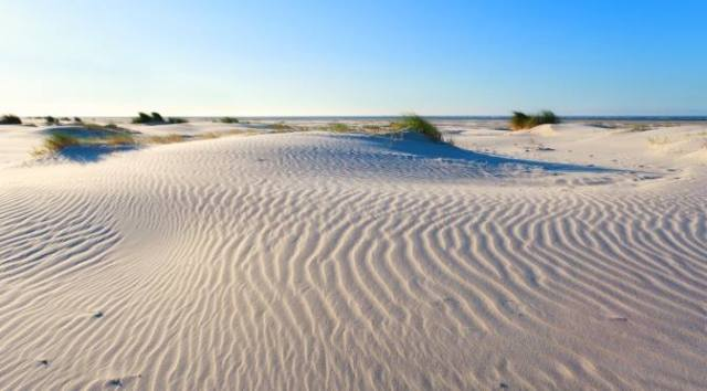 The Hague with Kids: Meijendel Sand Dunes