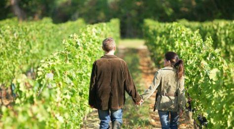 troyes-vineyards
