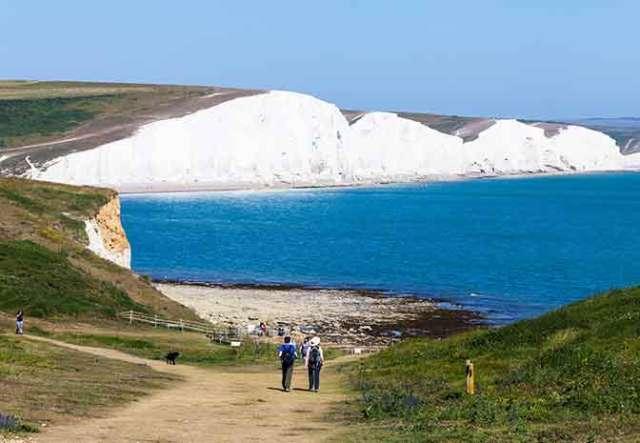 Dog Walks in Dover - White Cliffs