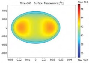 Temperature distribution in Chef Gunnar Hvarnes' award winning halibut roll from the Bocuse d'Or in 2011. Image from COMSOL.